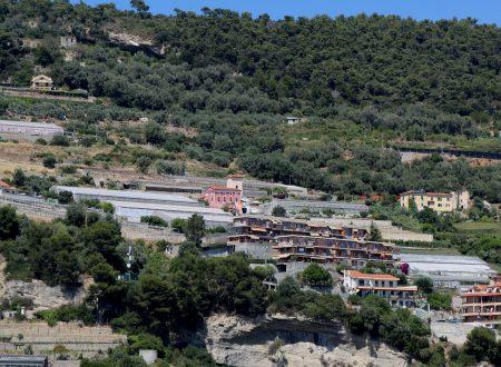 Ventimiglia (IM): la collina di Siestro, part.